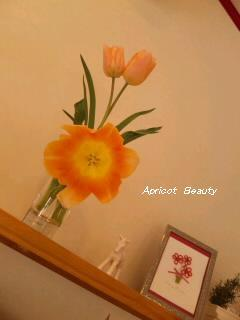 apricotbeauty.jpg